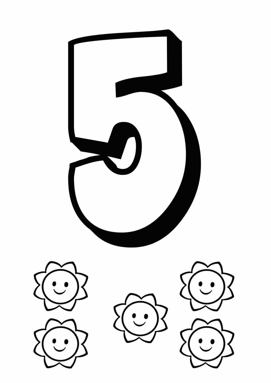 Пять раскраска для детей 2